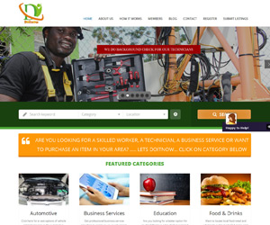 Standard Package of Web Design, Web Development for doitnow Nigeria