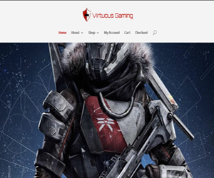 Premium Package of Web Design, Web Development and SEO Services for virtuousgaming